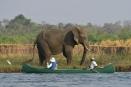 Mana Canoe Trail, Mana Pools, Zimbabwe