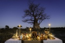Sundowner by Baobab tree at Mombo Camp, Botswana