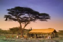 & Beyond Serengeti Under Canvas, Tanzania