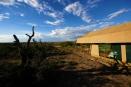 Asilia Ubuntu Camp, Serengeti, Tanzania
