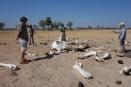 Discovering an elephant graveyard, Hwange, Zimbabwe